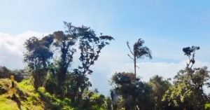 San lorenzo wi make cerro kennedy la agencia travelers