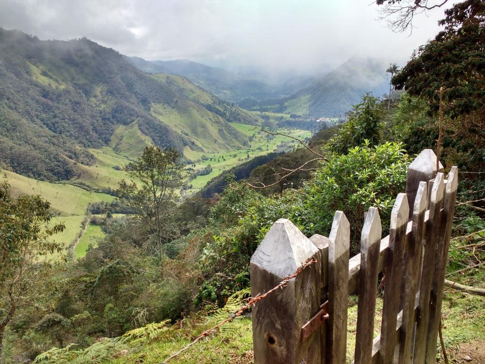 view reserva la montana