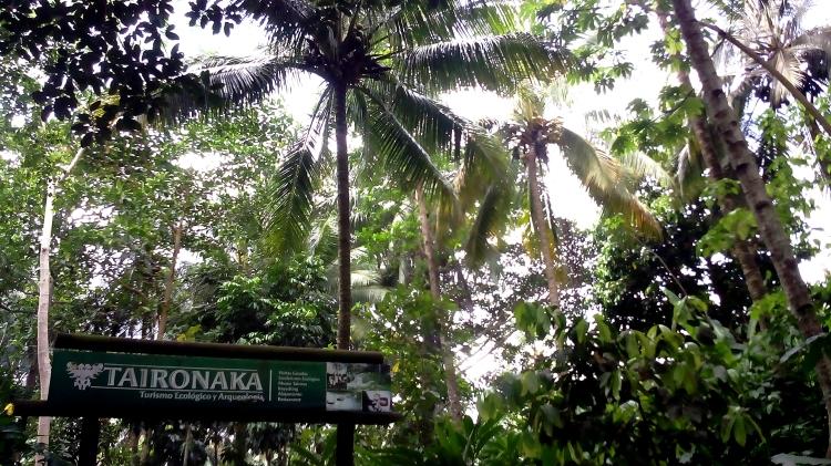 2 - Die Taironaka Ecolodge mitten im Urwald